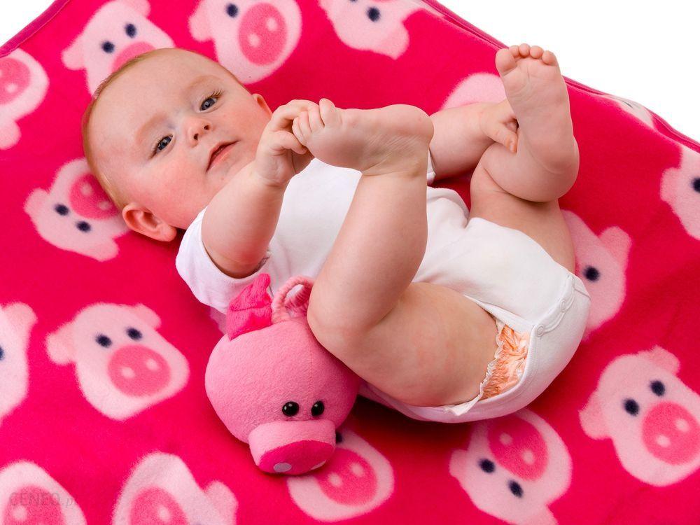 Kocyk dla dziecka Funny Pig
