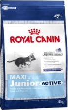 ROYAL CANIN Karma MAXI Junior Active 15kg