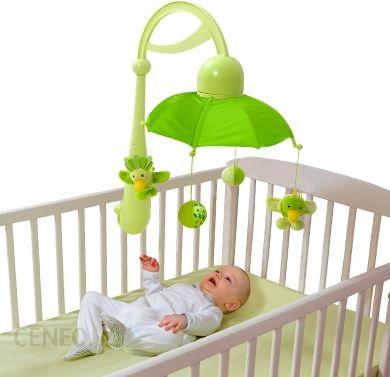 http://image.ceneo.pl/data/products/17367137/i-babymoov-karuzela-do-lozeczka-kolor-tecza-zielony.jpg