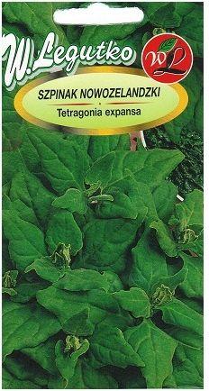 Legutko Szpinak Nowozelandzki 5G Nasiona Warzyw