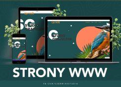 Gotowa strona www + domena + hosting na rok + pomoc konsultanta przez rok