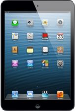Apple iPad mini 32GB WiFi 4G Czarny (MD541NF/A)