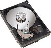 IBM DS4200 1000GB SATA EV-DDM (44X2454)
