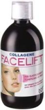 Ananda Collagen Facelift płyn 500 ml