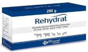 Biowet Puławy Rehydrat A 280 G