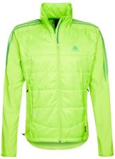 adidas Performance TERREX SKYCLIMB Kurtka Outdoor zielony D81755