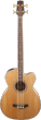 Takamine GB72CE NAT