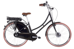 Ecobike Dutch