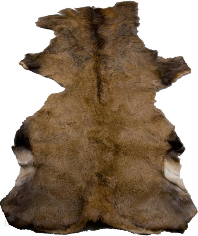 skóra z jelenia