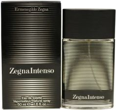 Ermenegildo Zegna Intenso woda toaletowa 100 ml spray