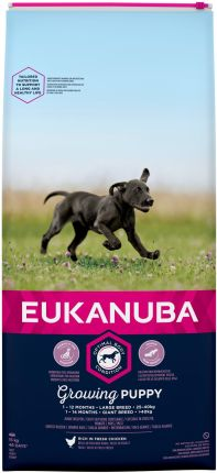 Eukanuba Puppy And Junior Large 15kg