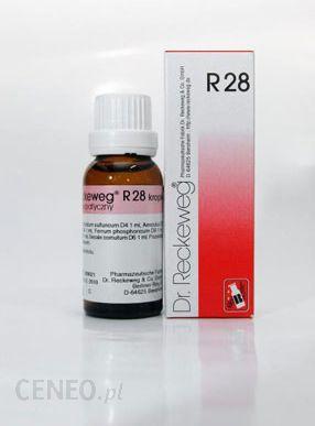 Dr Reckeweg R-28 Krople na dolegliwości kobiece 22 ml