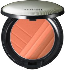 Kanebo Sensai Cheek Blush Róż CH 4 g