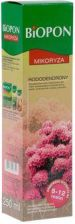 Biopon BIOPON Mikoryza 250ml do rododendronów