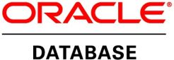 Oracle DATABASE STANDARD EDITION ONE 1CPU - zdjęcie 1