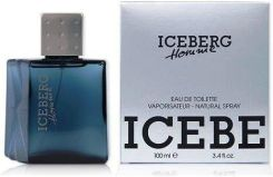 Iceberg Iceberg Homme Woda toaletowa 100 ml spray