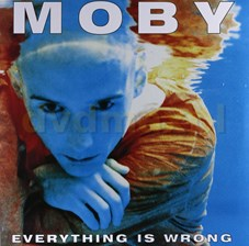 Moby Everything Is Wrong (Winyl)