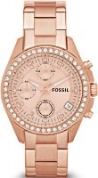 Fossil Decker Ladies Dress Women ES3352
