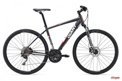 Giant Roam 1 Disc 2015
