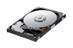 SEAGATE Wewnętrzny Momentus SpinPoint M8 (ST500LM012)