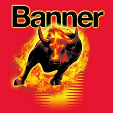 Banner Power Bull 12V 42Ah 390A P+