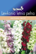 Lewkonia Letnia Ten Week Nd44850
