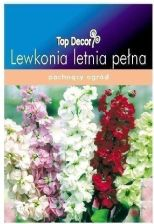 Lewkonia letnia Ten Week Top Decor