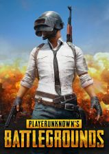 Playerunknown's Battlegrounds (PUBG) (Steam)
